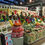 来場者に向け千葉県野菜をPRしました(11 月22日)